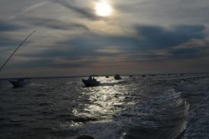 DSC 0073 300x199 - Fishing Day 2019 : une 6ème édition réussie !