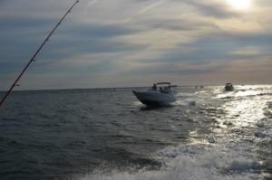 DSC 0078 1 300x199 - Fishing Day 2019 : une 6ème édition réussie !